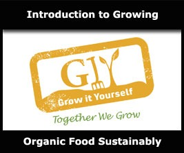 Learn how to grow organic food in a sustainable and environmentally-friendly manner