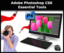 Learn more about Adobe Photoshop CS6 essential tools