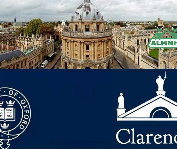 المنح الدراسية المقدمة من الجامعة البريطانية في مصر